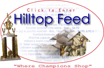 Hilltopfeed, Where Champions Shop!